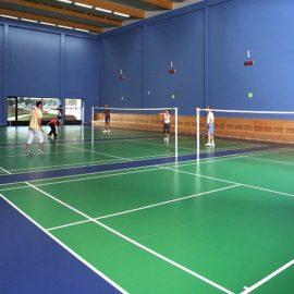 Aplikator Pengecatan Lapangan Badminton