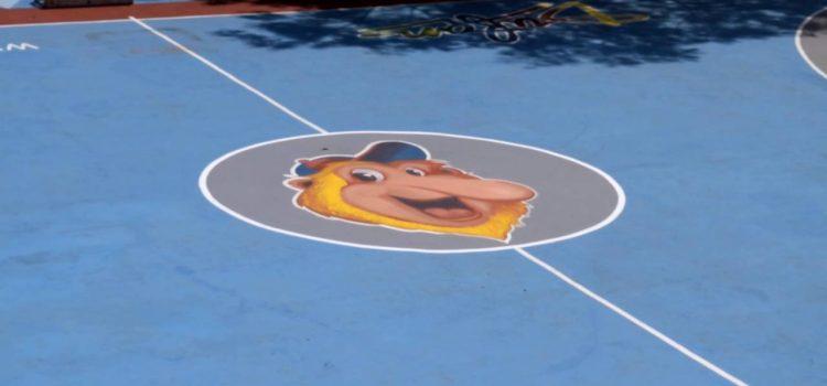 brand lapangan basket dufan